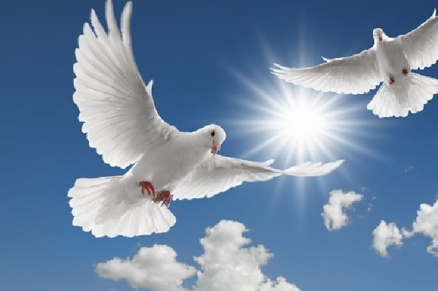 где Дух Господень - там свобода